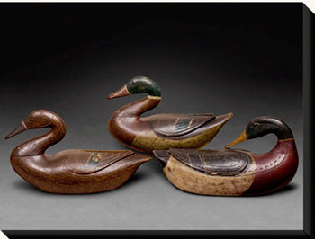 Mallards attributed to Hucks Caines