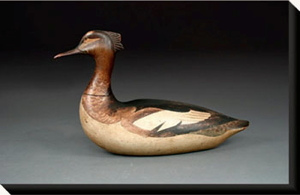 Red breasted merganser hen by Lothrop Holms